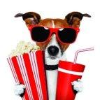 movie dog